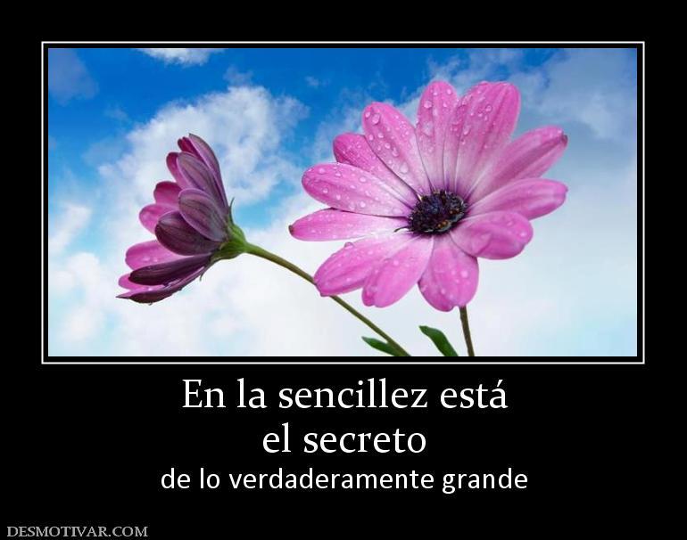 164171_en-la-sencillez-esta-el-secreto[1]